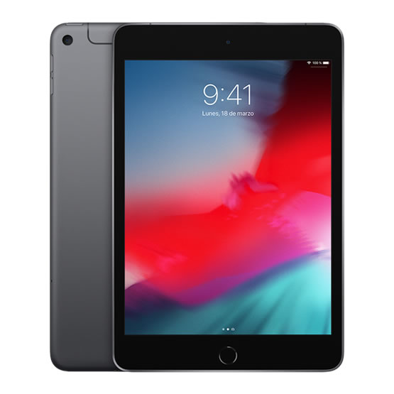 iPad mini Wi-Fi + 4G 256 GB - Space Gray (2019)