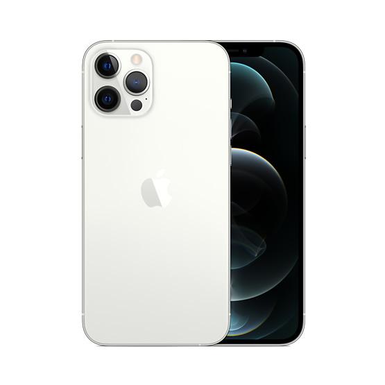 iPhone 12 Pro Max 256 GB - Silver